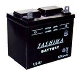 Baterie  TASHIMA 12V,24Ah,+ vlevo