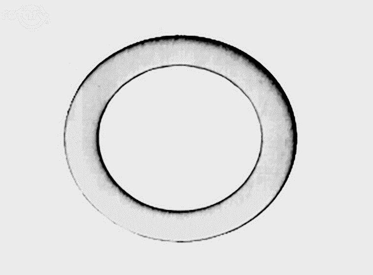 Těsnící podložka šroubu karbutátoru (BRIGGS&STRATTON,KOHLER)
