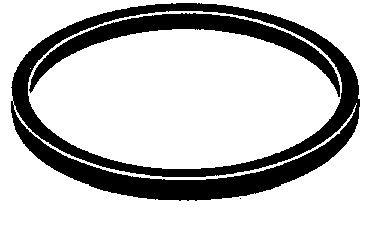 Těsnění palivové nádrže (pro TECUMSEH)