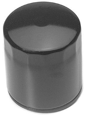 """Olejový filtr (BRIGGS & STRATTON Vanguard - """"vysoký"""")"""