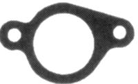 Těsnění sání  ( pro motory Briggs & Stratton QUANTUM)